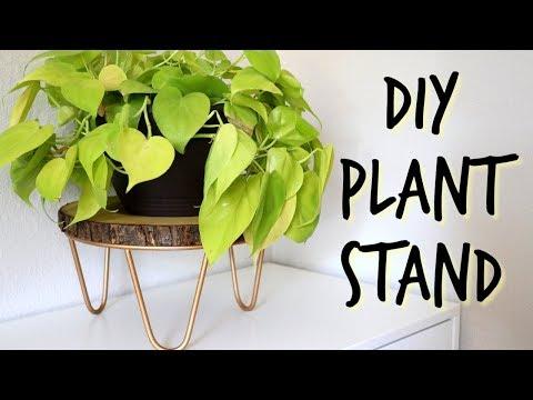 INEXPENSIVE | DIY | PLANT STAND ! #plantstand #plants #DIY