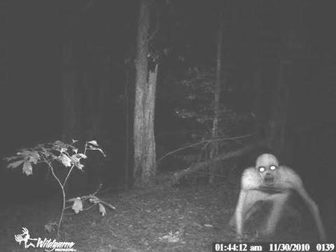 7 tenebrosas imágenes captadas por cazadores en la oscuridad