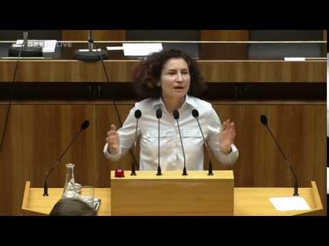79. Nationalratssitzung · Alev Korun (Grüne)