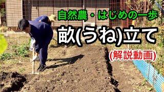 【初めの一歩】自然農の畝(うね)の立て方