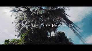 La Melodía Perfecta Video Oficial  ¿Qué Pasa?