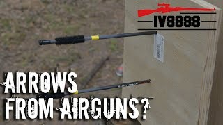 Arrows from Air Rifles?