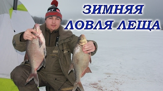 Зимняя рыбалка на леща. Подледный фидер.