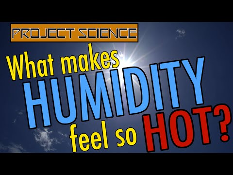 What Makes Humidity Feel So Hot?   Project Science