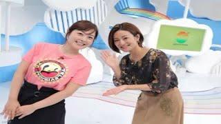 日本テレビ系バラエティ番組『行列のできる法律相談所』で2011年11月27...