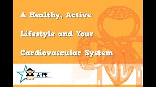 Gcse pe a healthy, active lifestyle and your cardiovascular system edexcel board