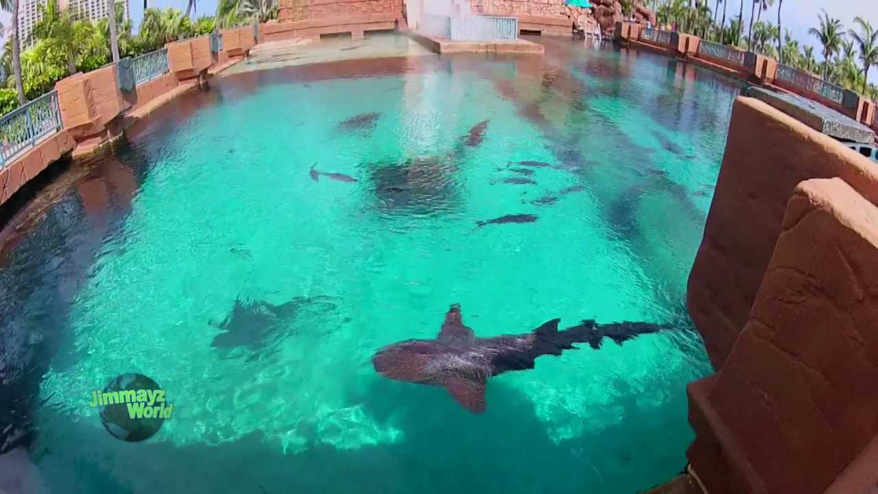 thai massasje tønsberg paradise hotel sverige