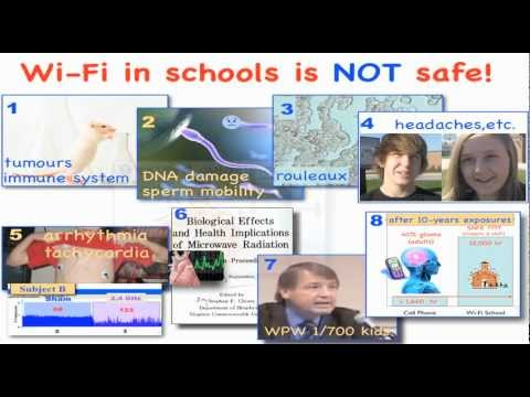 Dr. Magda Havas: WiFi in Schools is Safe.  True or False?