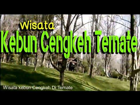 Wisata Kebun Cengkeh Ternate, Liburan Unik Nuansa Romantis Dan Keren