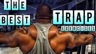 Video TOP 10 TRAP EXERCISES FOR HUGE TRAPS (Tricks & Tutorials) download MP3, 3GP, MP4, WEBM, AVI, FLV Juni 2018