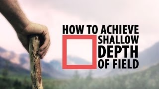 How to Achieve Shallow Depth of Field - Photography Tips