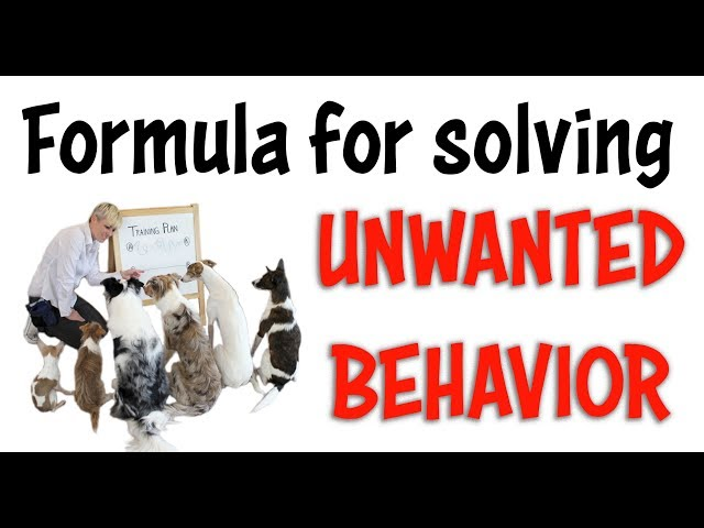 FORMULA for solving UNWANTED BEHAVIOR - Dog and Puppy Training