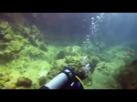 Scuba Diving in the British Virgin Islands During Your Yacht Charter