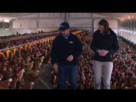 Australian Egg Farmer Profile: John Rohde