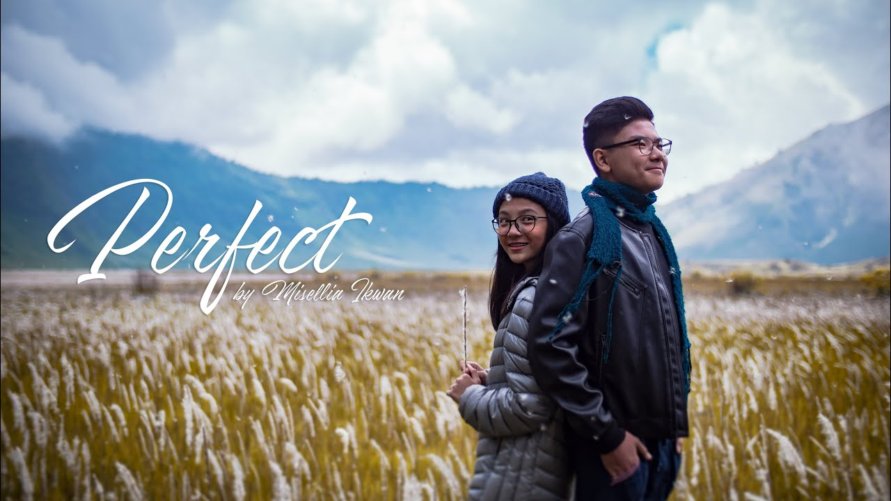download mp3 cover hanin dhiya perfect