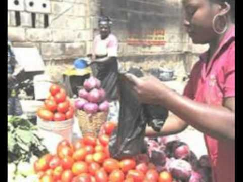 WORLD FOOD PROGRAMME COMMENDS IN NIGERIA.mpg