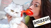 TESTING WEIRD AMAZON CAT PRODUCTS