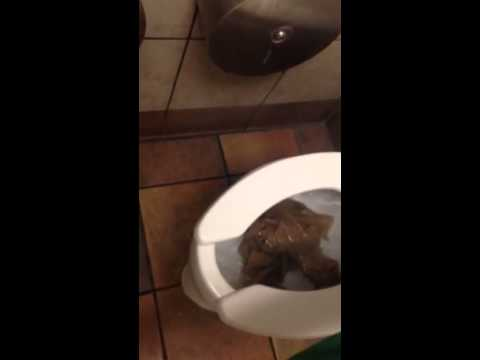 Clogged kohler highcrest welcome toilet  YouTube