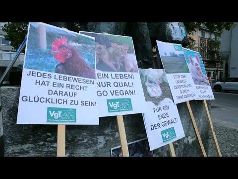 مسيرة في زيورخ تدعم حماية الحيوانات لأجل مواجهة تغير المناخ…  - نشر قبل 2 ساعة