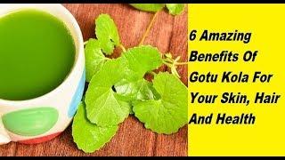 6 Amazing Benefits Of Gotu Kola For Your Skin, Hair And Health