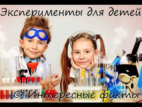 Интересные эксперименты для детей | Мир интересных фактов