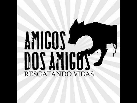Amigos dos amigos 2013