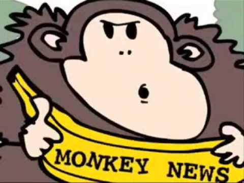 The Best Monkey