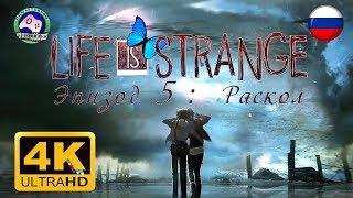 Life is Strange Эпизод 5 Раскол / Финал 4K 60FPS ИГРОФИЛЬМ 18+ русская озвучка фантастика