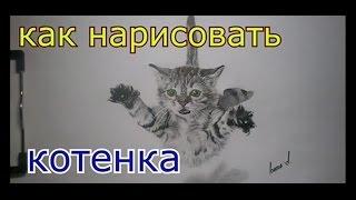 Рисунок котенка(ускоренное видео)