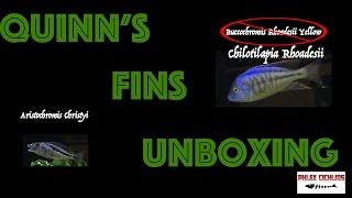 Fish Unboxing | Quinn's Fins