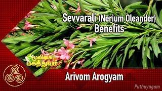 Arivom Arogyam 26-11-2018 PuthuYugam tv Show