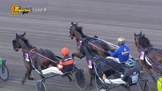 Vidéo de la course PMU PRIX E3 UTTAGNINGSLOPP - HINGSTAR (LOPP 8)