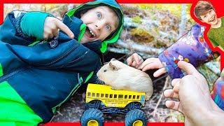 Monster Truck School Bus Bunker for our Pet Guinea!