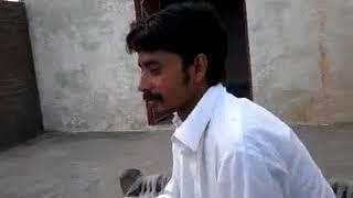 Malik sikandar (LAT) chan sajna
