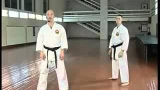 Каратэ для начинающих Часть 5 удары и блоки в движении, стойки
