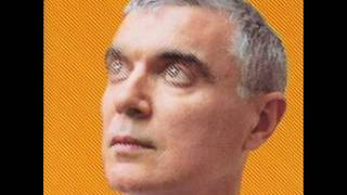 Like Humans Do (radio edit) by David Byrne