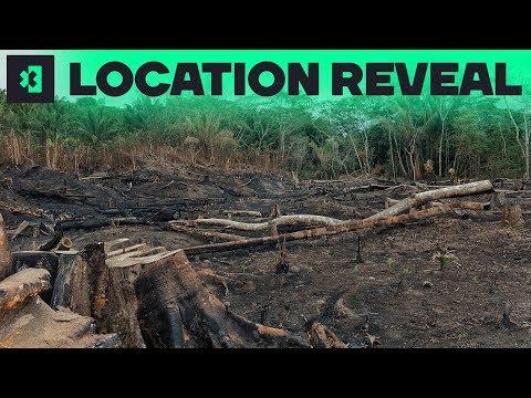 Extreme E race to wind through Amazon burned zone