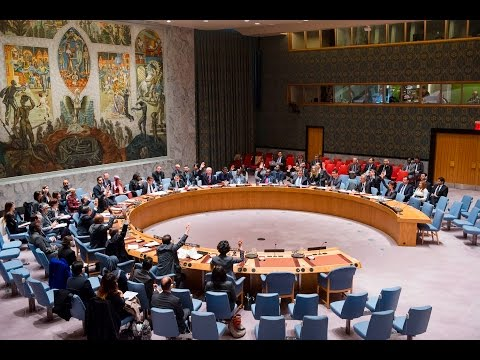 UN Security Council adopts Resolution on Youth, Peace and Security