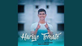 Hariye Tomate By Mahtim Shakib Mp3 Song Download