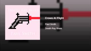 Crows At Flight