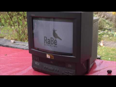 RaBe-Fest 2017 Trash Exploitation Film Festival