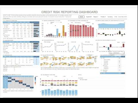 Credit Risk Management Dashboard