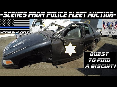 Scenes From The Police Fleet Auction! Crown Rick Auto