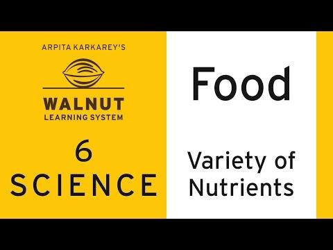 6 Science - Food - Variety of nurtients