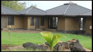 Building With Bamboo: Why Bamboo Homes Are Eco-Friendly