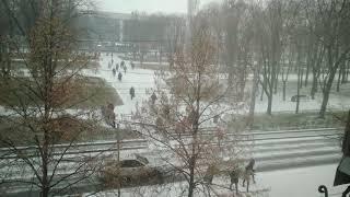 Первый снег(1)