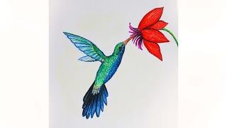 Уроки рисования. Как нарисовать птицу КОЛИБРИ пастелью | Art School