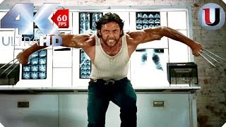 Gambar cover Wolverine vs Sabretooth - The Island Fight - X Men Origins Wolverine - MOVIE CLIP (4K HD)