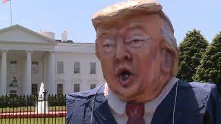 PTV news 15 Maggio 2017 - Si prepara l'impeachement per Trump