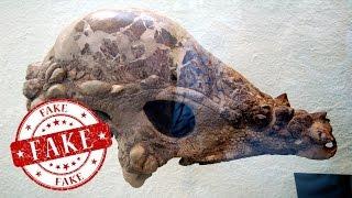 El falso cráneo reptiliano de Luis Carlos Campos